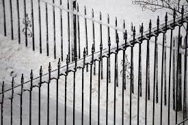 Customize Your Automatic Driveway Gate Buzz Custom Fence