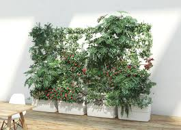 green wall and living vertical plant