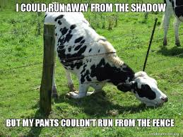 I Could Run Away From The Shadow But My Pants Couldn T Run From The Fence Jem Make A Meme
