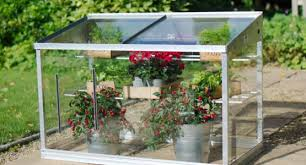 mini greenhouse growing guide access