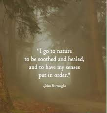 nature healing quotes sayings nature healing picture quotes