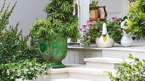 nz house and garden garden of the week