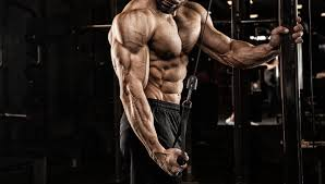 powerful arms train your triceps