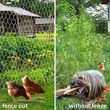 Top 10 Best Electric Fence For Chicken Coops 2020