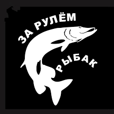 2020 Russian Car Stickers Fishing Lovers Funny Sticker Shark Akyna Black White Decals Y171 Anglers 12 8 15 2 Cm From Auto2011 1 31 Dhgate Com
