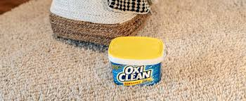 oxiclean blood sn removal