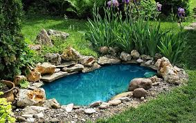 pond pump troubleshooting guide