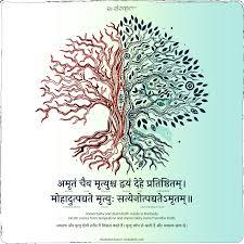 adi shankaracharya quotes adi shankaracharya quote on duality