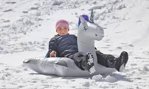 Sledding in Marshfield to celebrate the end of the storm - News -  Marshfield Mariner - Marshfield, MA
