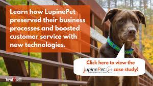 LupinePet Case Study: Same Old Dog, Same Old Tricks, Just a Lot ...