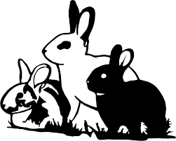 For Rabbit Bunny Hare Jackrabbit Car Truck Window Laptop Vinyl Decal Sticker Various Sizes Car Stickers Aliexpress