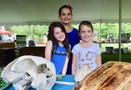 Milton set for Horseshoe Crab & Shorebird Festival May 24-26 | Cape Gazette
