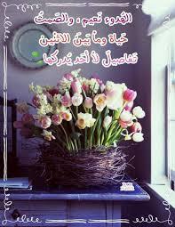 صباحكم ورد وياسمين Great Pictures Flowers Pictures