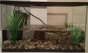 How To Clean Turtle Tank Glass Aquarium Adviser