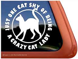 Amazon Com Crazy Cat Lady Vinyl Window Decal Sticker Automotive
