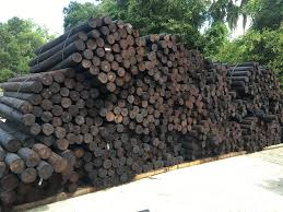 4 5 X 6 5 Creosote Fence Posts Sparr Building Farm Supply Sparr Building And Farm Supply