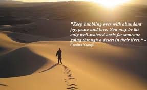 best life is like a desert quotes thenestofbooksreview