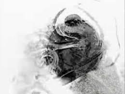 Din Of Celestial Birds - Dirigido por E. Elias Merhige (2016 ...