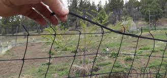 Steel Pole Deer Netting Install Using T Posts
