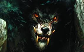 werewolf images and wallpapers 74 images