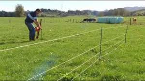 Gallagher Smart Fence Temporary Paddock Installation Youtube