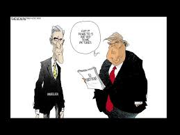Image result for mueller cartoon""