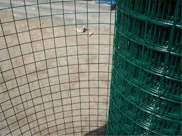 Economic Green Pvc Coated Wire Mesh Rolls Welded Wire Fence For Fencing