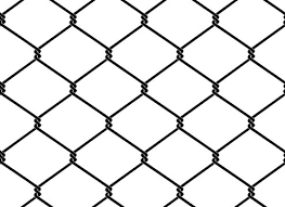 Chicken Wire Photos Royalty Free Images Graphics Vectors Videos Adobe Stock