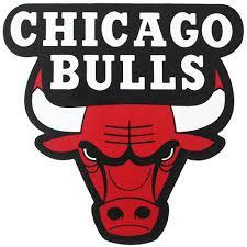 Chicago Bulls Sticker Fameusshop