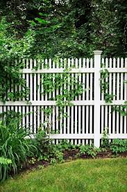 Love The Tall Picket Fence Maybe With Wider Spaces Between Pickets Fence Landscaping Privacy Fence Designs Backyard Fence Ideas Privacy