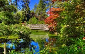 trees bridge pond park washington