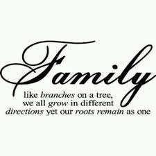 family quotes sayings like branches on a tree collection of