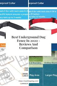 Best Underground Dog Fence In 2020 Reviews And Comparison In 2020 Dog Fence Dogs Wireless Dog Fence