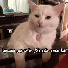 Ex بتصور صوره حلوه بدخل اشوفها تاني Facebook