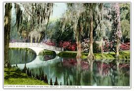 history of magnolia plantation