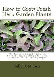 bol com how to grow fresh herb garden