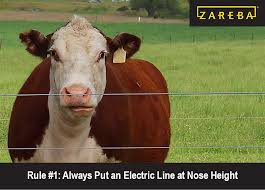 How Many Strands 7 Rules For Electric Fencing