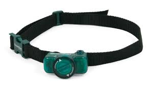 Guardian Extra Underground Fence Receiver Collar Canadian Tire