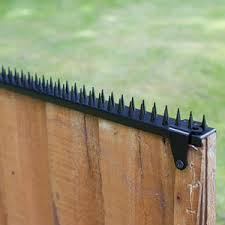 Fence Wall Spikes 20 From 0 60