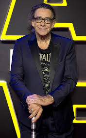 Chewbacca Actor Peter Mayhew Dead at 74: Star Wars Cast and More Celebs  React - E! Online