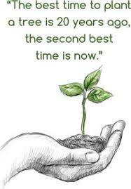 plant tree environment quote poster best for rally save earth
