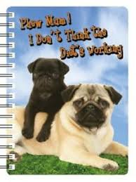 pug t not working 3d notebook great