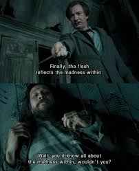 remus and siriusblack understand the madness in harrypotter