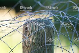 Semiabstract Of Metal Wire Fencing Sitting On Top Of Centered Fence Post Stock Photo Download Image Now Istock