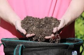 gardner s guide to reuse potting soil