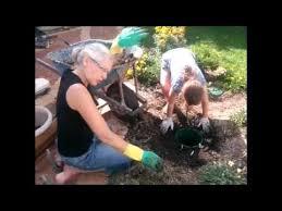 preparing clay soil for a pot you