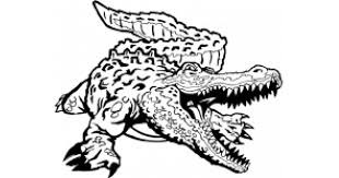 Custom Alligator Decals And Crocodile Stickers Any Size Color