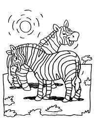 Zebra Kleurplaat Google Zoeken Dierentuindieren Kleurplaten