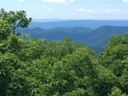 Bearfence Trail At At Intersection Picture Of Bearfence Mountain Shenandoah National Park Tripadvisor