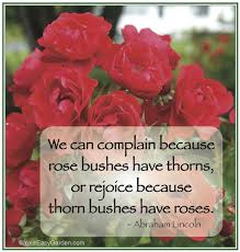 rose quotes and sayings quotesgram